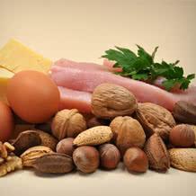 Aliments les plus protéinés